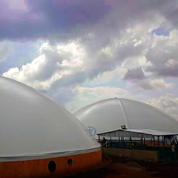 Olivado biogas plant